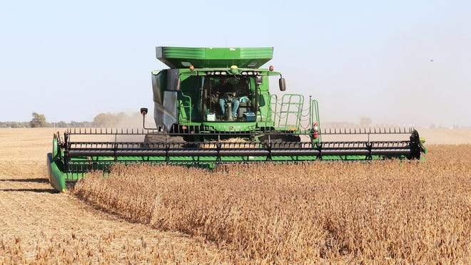 A combine loads up on soybeans as the harvest continues in Livingston County. This farmer is taking advantage of the weather by bringing in soybeans between Fairbury and McDowell.
