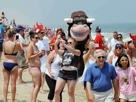 The bull from The Starboard's annual Running of the Bull on Dewey Beach earlier this year.