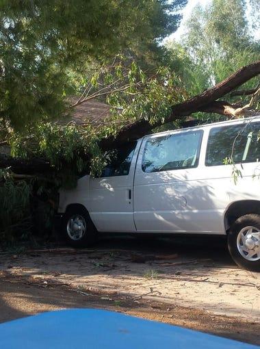 High winds blew through a north Phoenix neighborhood