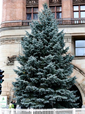 The annual Christmas tree sits in place on E. Wells St. in front of Milwaukee City Hall.