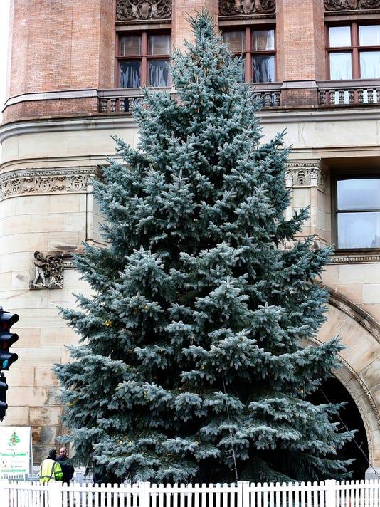 City Christmas Tree 2016