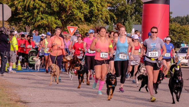 More than 1,000 runners and 500 dogs participated in the Fast and Furriest 5K, held Oct. 15 at Shelby Farms Park.