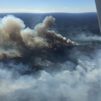 Fire burns through the tops of some trees off La. Highway 119 near Gorum on Tuesday.