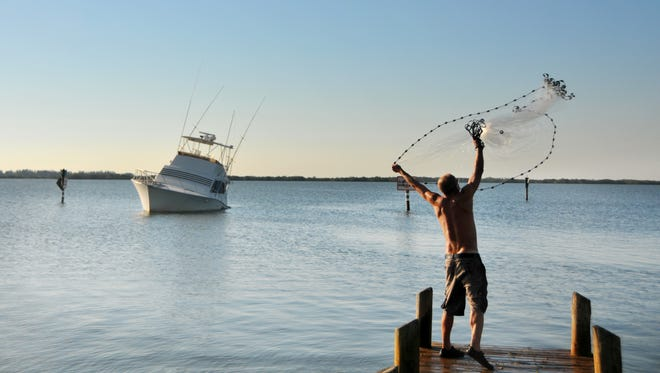 Tony Anderson from England, now living in Cocoa Beach, throws a cast net off the dock at Bicentennial Park in Cocoa Beach on the Banana River, netting bait fish.