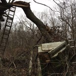 This box stand in Richland County lasted nearly 26 years in a giant red oak before tumbling in a late summer storm.