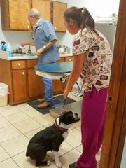 Dr. Wes Wiley, Alamogordo Animal Clinic, the newest