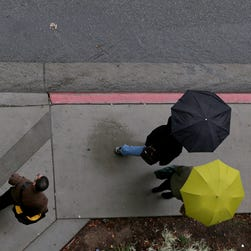 Umbrellas show up in Los Angeles during a rain storm