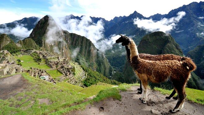 Wander the ancient ruins of Machu Picchu on Whole Journeys' nine-day Pachamama's Peru hiking and wellness trip.