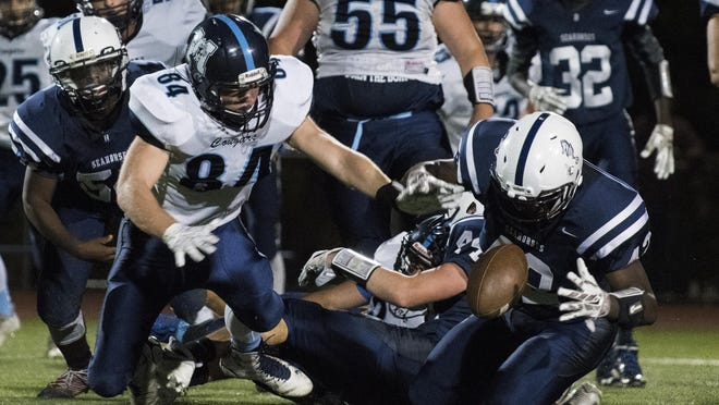 Burlington's Aidan Brown (42) recovers the fumble during the high school football game between the Mount Mansfield Cougars and the Burlington Seahorses at Buck Hard Field on Friday night.