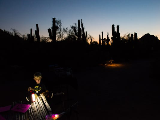 Flashlight Tours at the Desert Botanical Garden