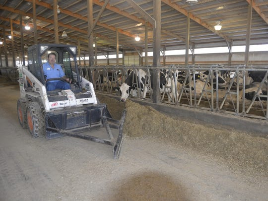Tony Simon pushes feed for his cattle, a usual task