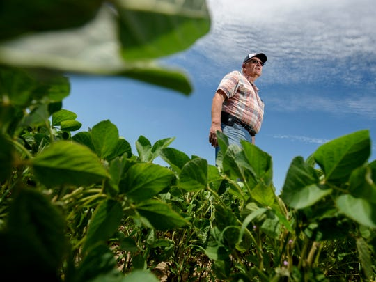 Farmer Dave Williams stands among the 2,300 acres of soybeans on his farm in Elsie, July 9, 2018. By June 9, only 43% of soybeans had been planted, according to U.S. Department of Agriculture crop progress reports.