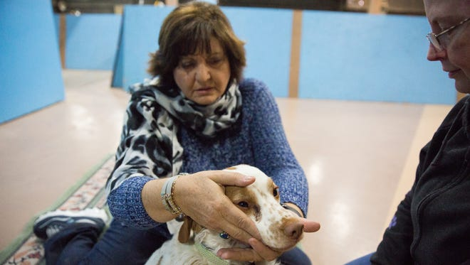 Veronica Fraser, left, a certified reiki master, gives Castle, who is blind, a reiki session at Your Pet Space.