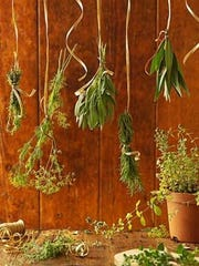 Tie sprigs or branches in small, loose bunches; hang the bunches up to dry, leaves downward, wrapped loosely in muslin or thin paper bags (avoid plastic at all costs); after about seven to 10 days, your herbs should be dry and crunchy as cornflakes.