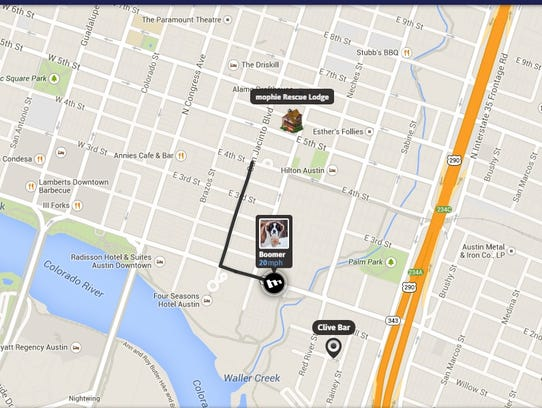 An interactive app that tracks Mophie St. Bernard rescue
