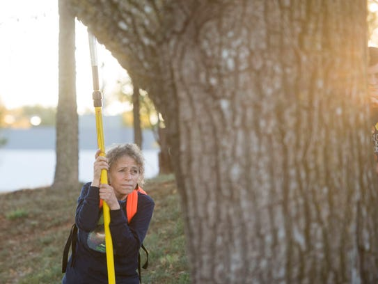 Ilona Leki examines a tree during a tree pruning class