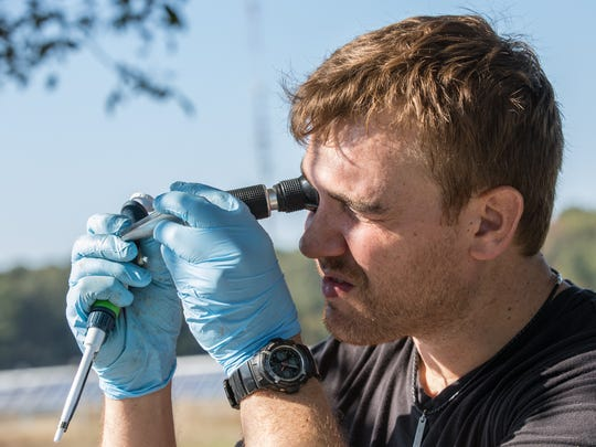 Molecular Biologist, Jeff Shipp, uses a refractometer to measure light bent from the beet's sugar content at a UMES test plot in Princess Anne on Wednesday, Oct. 17, 2016.