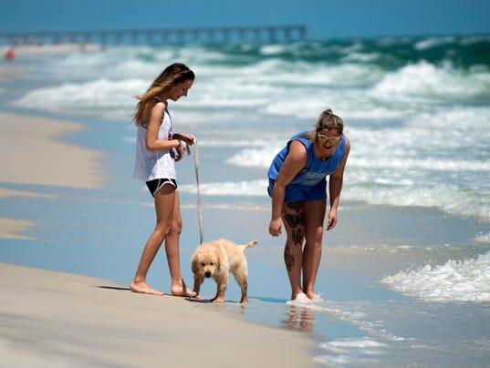 Is Cocoa Beach Dog Friendly