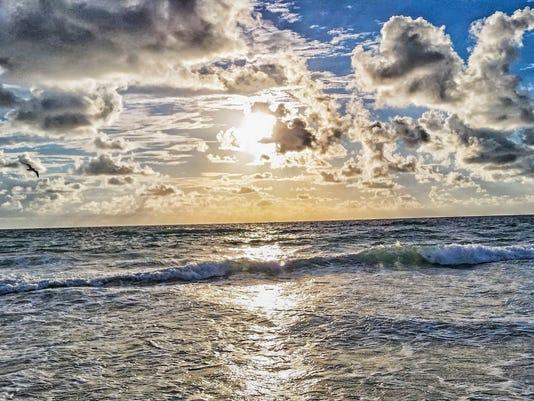 Florida Beach Atlantic Ocean