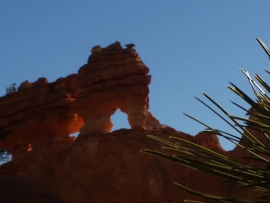 2 - Bryce Canyon Turtle