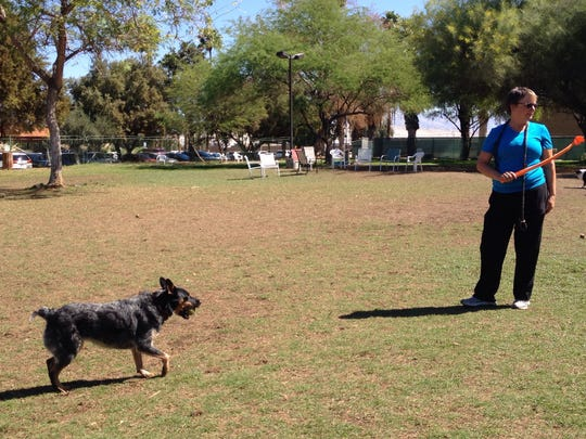 Meri Hall of Cathedral City tosses balls to Lana at the Palm Springs Dog Park.