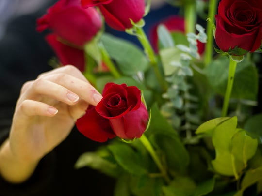 Amanda Bender, of Poseyville, looks through each rose and removes blemished petals before they are packaged for delivery at Zeidler's Flowers, Saturday, Feb. 11, 2017. Area florists will deliver thousands of roses for Valentine's Day, which is their busiest day of the year.