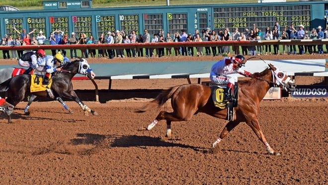 Fly Baby Fly wins 2017 All American Futurity.