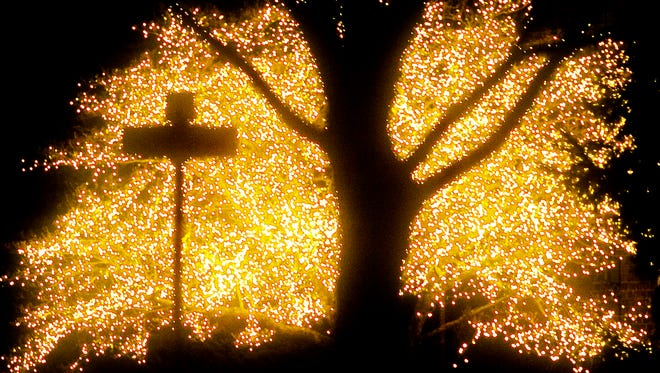 """A photo of the little dogwood tree at the corner of Grant Drive and George Street in Hanover that's come to be know as """"The Wish Tree."""""""