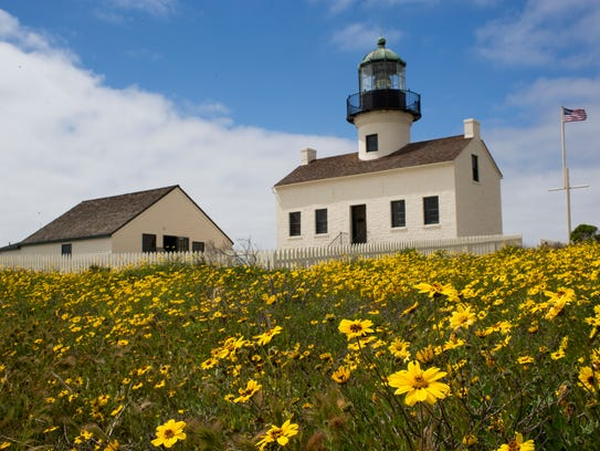 Flowers grow in front of the Old Point Loma light house