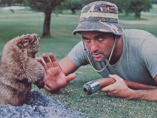Bill Murray deals with a rogue gopher in a scene from
