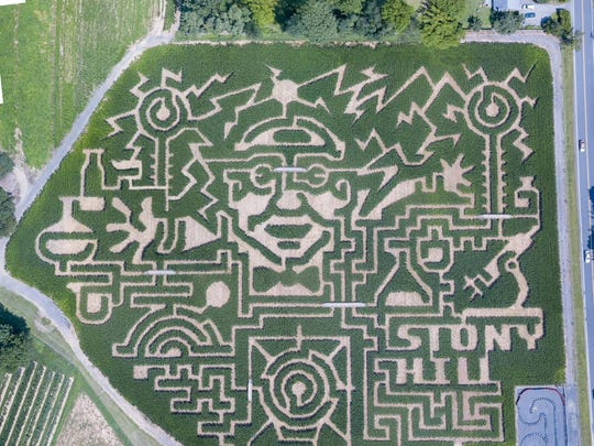 Stony Hill Farms' corn maze.