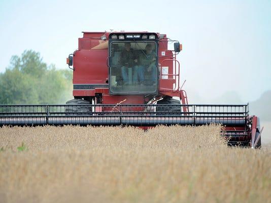 Harvest roundup headline