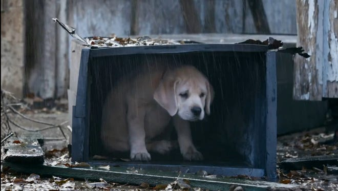 "Budweiser's Super Bowl ad called ""Lost Dog"" was tops in the annual USA TODAY Ad Meter."