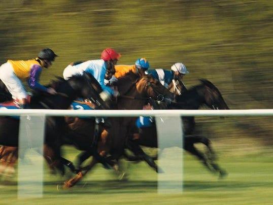 horseraceturfh.jpg