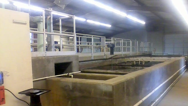 Water treatment is part of the collection and distribution process.