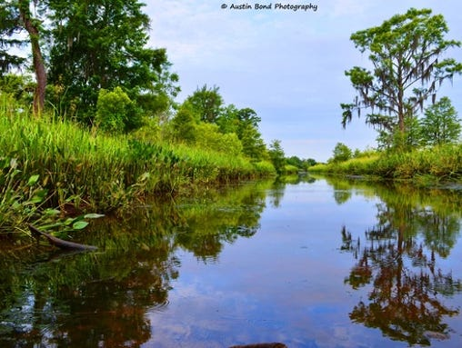 A contributor captured this serene photo during a morning spent in Pawleys Island, S.C.