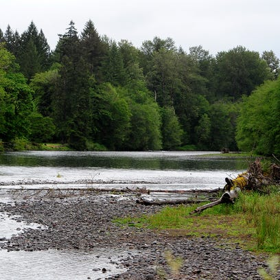 The North Santiam River before it reaches the Geren
