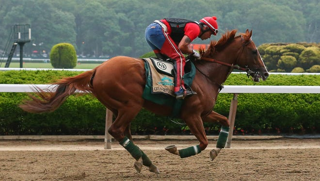 California Chrome ridden by exercise rider Willie Delgado on the track during workouts in preparation for the 2014 Belmont Stakes. California Chrome is the 3-5 favorite.