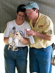 Gwen and Dennis Patrick hold Gwenis, a peregrine falcon who is now hanging out in Fremont, after they tagged her when she was a chick at the Canadian side of the Ambassador Bridge.