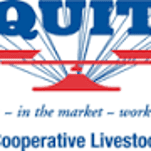 Equity Livestock's year reflects cattle price slump
