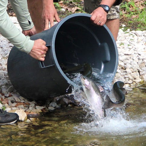 Smith: Southeast Wisconsin chapter of Trout Unlimited helps improve Paradise Springs