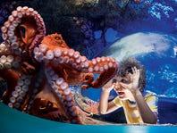 SeaWorld® Savings Nationwide