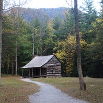 Yellow leaves accent the Carter-Shields Cabin in Cades Cove.