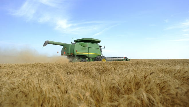 Don Clark combines wheat in rural Elkton, S.D. Wednesday, July 11, 2012. In 2017, drought conditions have returned, especially in the north central part of the state.  (Emily Spartz / Argus Leader)