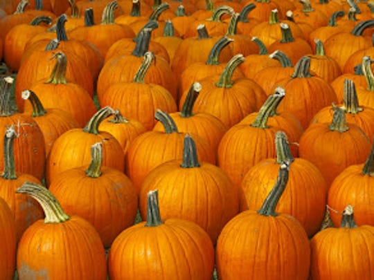 A pumpkin patch and Halloween parade is set for Oct. 27 in downtown Birmingham.