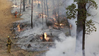 Firefighters hose down hot spots along a containment line during a controlled burn to fight the King fire on Monday near Placerville.