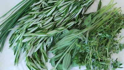 Use fragrant herbs in potpourris, decorations, herb cushions, scented sachets, potholders, scented hangers, tea cozies, pomanders and more to freshen the air.