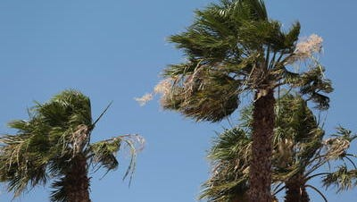 AQMD has issued a dust advisory for the Coachella Valley due to the high winds.