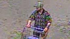 Vehicle burglary suspect
