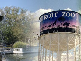 Enjoy the benefits of a Detroit Zoological Society membership!